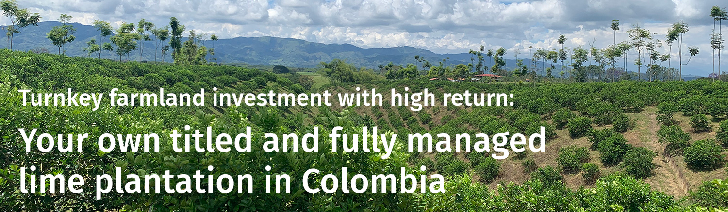 Turnkey farmland investment with high return: Your own titled and fully managed lime plantation in Colombia
