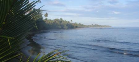 Caribbean Beach & Eco Resort in Tropical Paradise