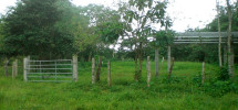 Different Titled Lots in Las Lajas, Chiriqui